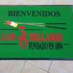 felpudo, alfombra, logo, institucional, vinilo, rulo, publicidad, nylon, pvc